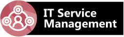 IT Service Management Leadership Program Development